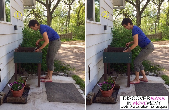 Discover ease in gardening