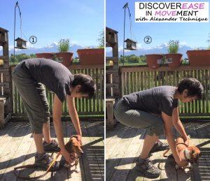 Ebook - Mari picking up dog DIM 600
