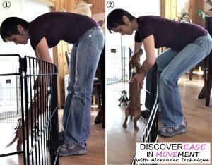 Ebook - Mari picking up dog DIM2 600