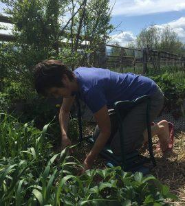 gardening all 4s